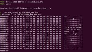 09-cve-2013-3346_decode_binary