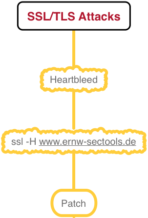 TLS in the Enterprise: Is Heartbleed still a Problem